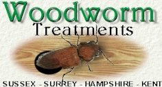 Woodworm Treatment - East Sussex, West Sussex, Surrey, Kent, Hampshire